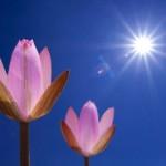 L'Ansia si risveglia in Primavera